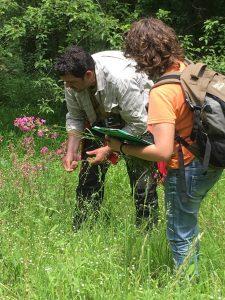 Erbario relativo alla biodiversità del paesaggio protetto Konjuh